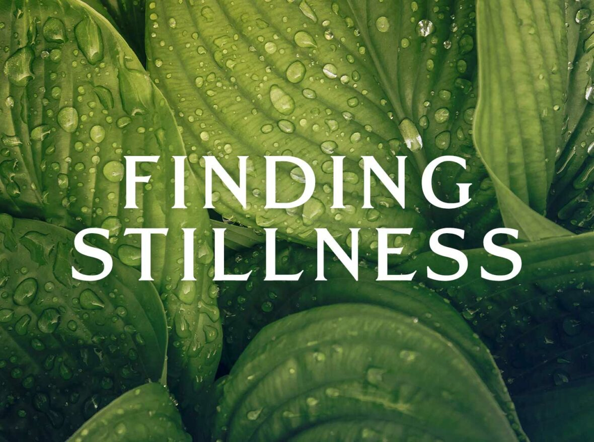 Finding Stillness