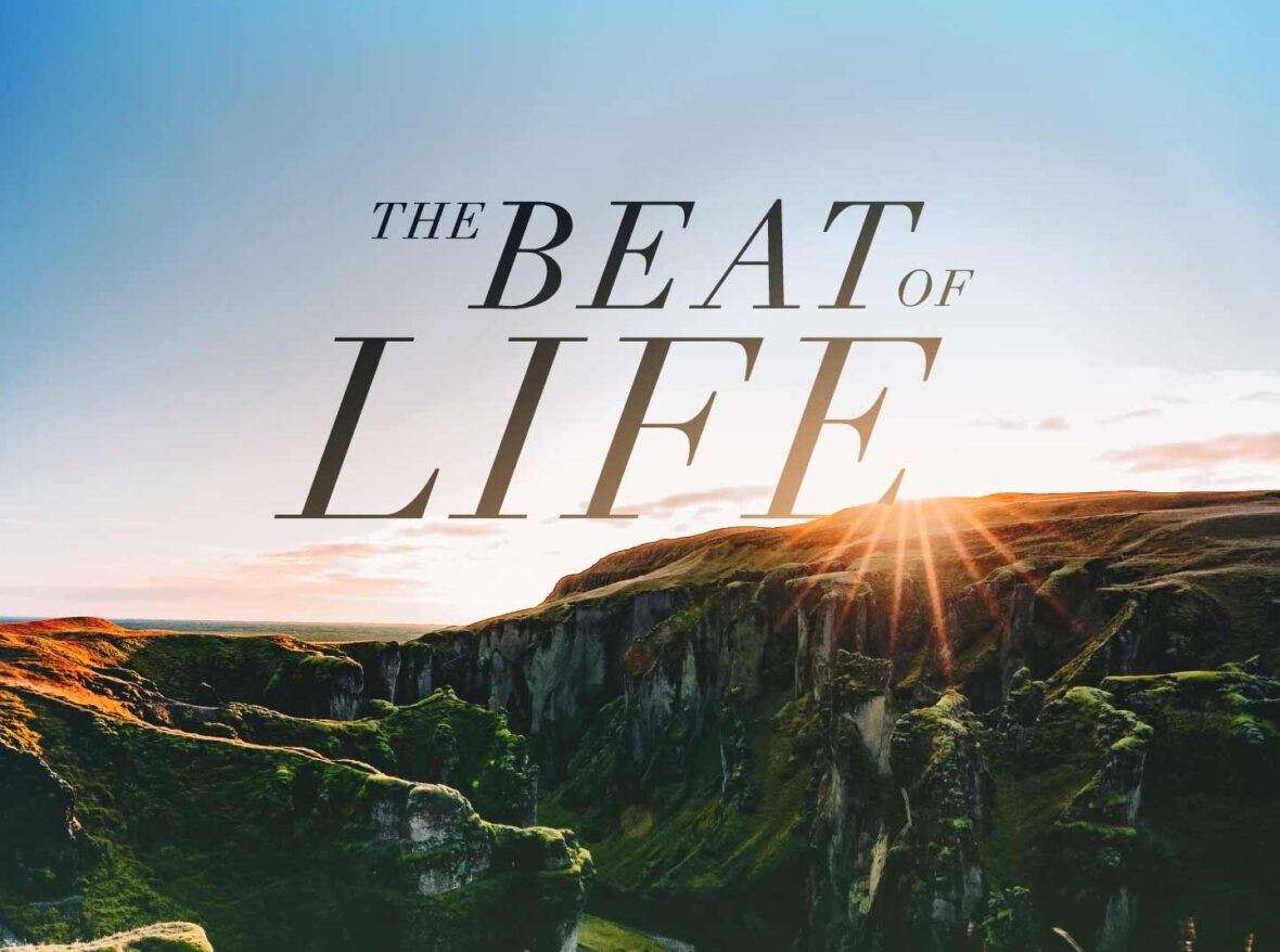 The Beat of Life (528 Hz)