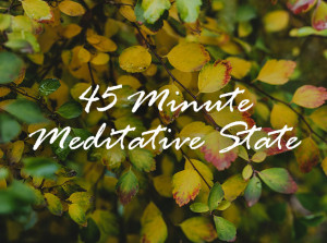 45 Minute Meditative State