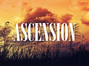 Ascension (Royalty-Free Audio Track)