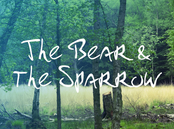 The Bear and the Sparrow