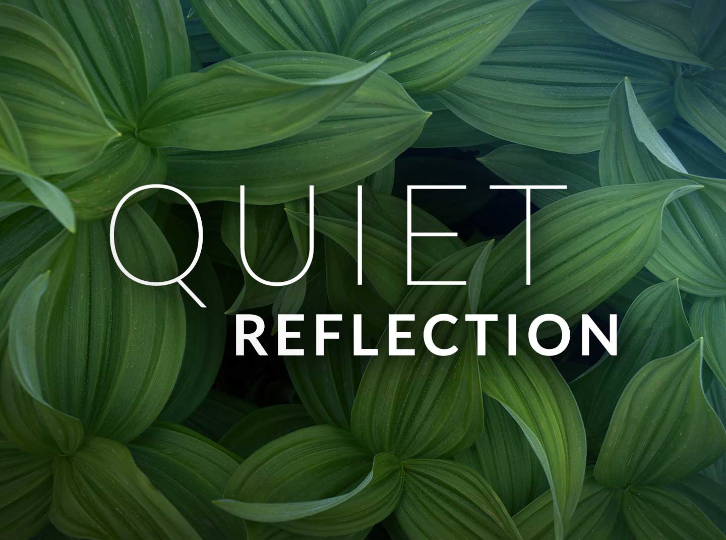 Quiet Reflection — Relaxing, Meditative Piano Music by Chris Collins